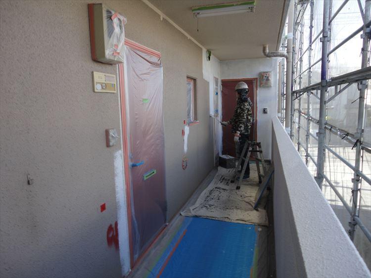 共用廊下壁 塗装